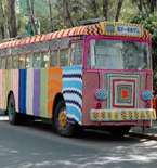 Craft Bits  —  Knit Buses, Gluten-Free Cakes, Lego Room