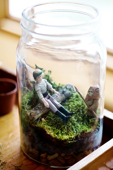 DIY Star Wars Terrarium