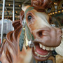 Craft bits news story on vintage carousel horses