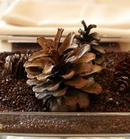 Coffee Creates an Unexpected Winter Centerpiece