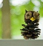 Pinecones Create Easy Winter Decor
