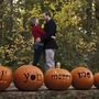 Pumpkin Wedding Proposal
