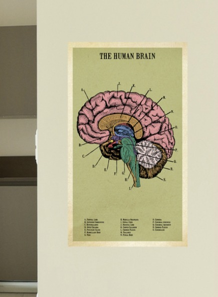 A poster with a green background and an image of the human brain