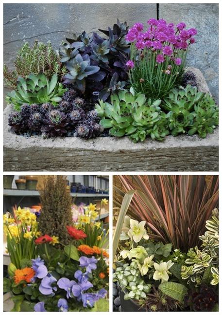3 ways to build an all season container garden for earth for Gardening 4 all seasons