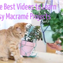 easy macrame projects video how-to