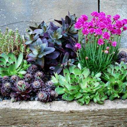 3 Ways to Build an All-Season Container Garden