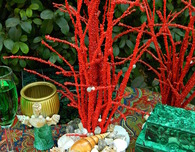 Faux Coral Centerpiece