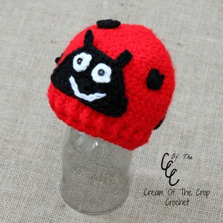 Preemie Ladybug Hat