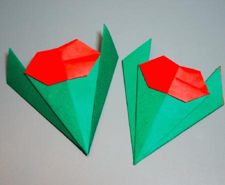 Tulip Origami Pattern