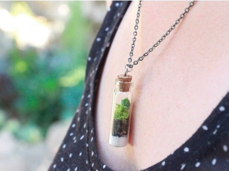 DIY Succulents: Terrarium Necklace