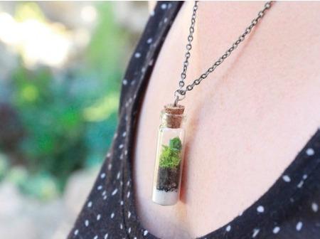 Diy Succulents Terrarium Necklace Craftfoxes