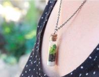 DIY Succulents: Terrarium Necklace