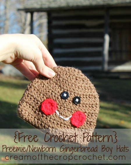 Preemie/Newborn Gingerbread Boy Hat