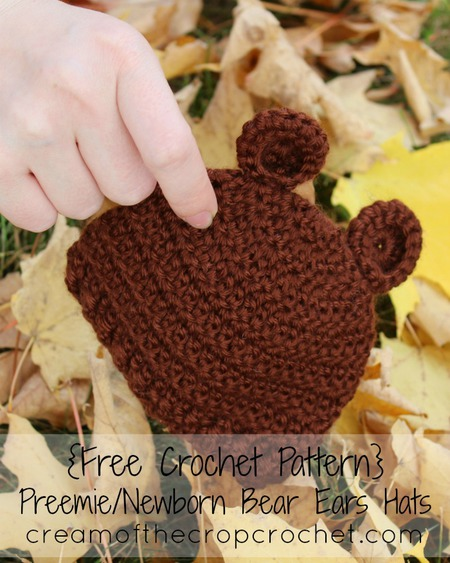 Preemie/Newborn Bear Ears Hat