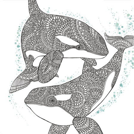 orca whale free adult coloring book page - Free Adult Coloring Books