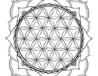 Free Coloring Page with Flowers, Stars and Geometric Shapes