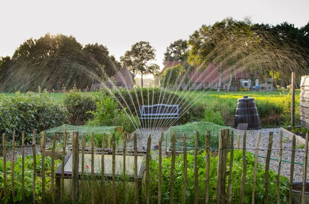 Home Irrigation System Installation: A Step By Step Guide