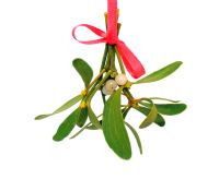 mistletoe is bunched together to create a unique Christmas decoration