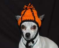 crochet march madness dog hat
