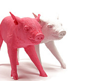 designer pig home decor