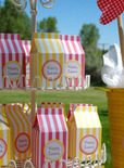 4th of july holiday favor boxes