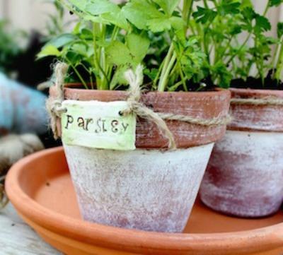 4-season container garden