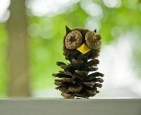 autumn craft idea featuring pine cone owl
