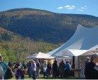 stowe foliage art festival