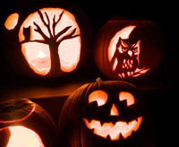 pumpkin carving ideas, owl pumpkins