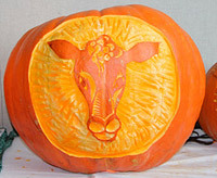 cow pumpkin carving idea