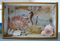 Shadowbox with beach photos, seahorse, seashells, and other beach items.