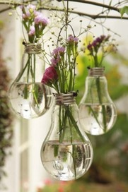 lightbulb vases with flowers