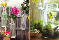glass jars and bottles repurposed as vases and terrariums