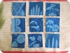 summer crafts to do with kids sunprints