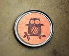 magnet owl craft