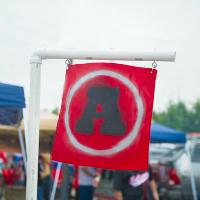 PVC Pipe Team Flag