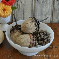 Pinecone Acorn Fall Craft Idea