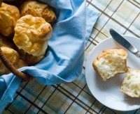 Gluten-Free Thanksgiving Recipes: Soft Dinner Rolls