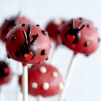 Cake pops decorated to look like lady bugs