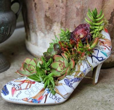 succulent plants, repurpose shoes, unique planter