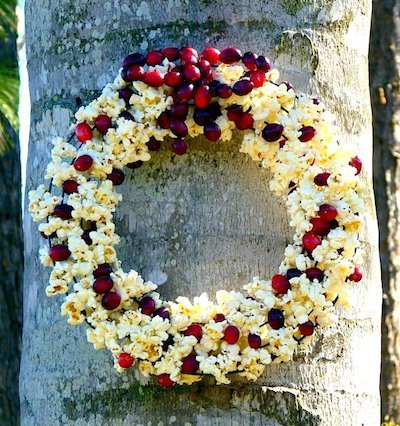 popcorn cranberry birdfeeder wreath