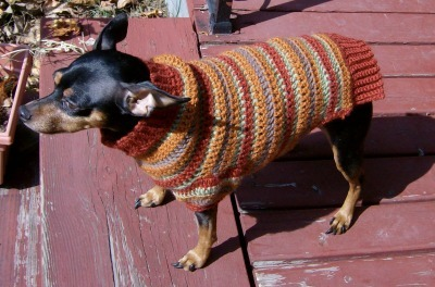 Min Pin dog sweater