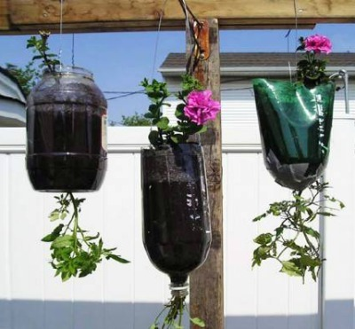 DIY Hanging Planters, Soda Bottle Crafts, Hanging Soda Bottle Planter, Easy Gardening DIY