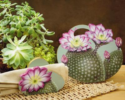 desert flower painting