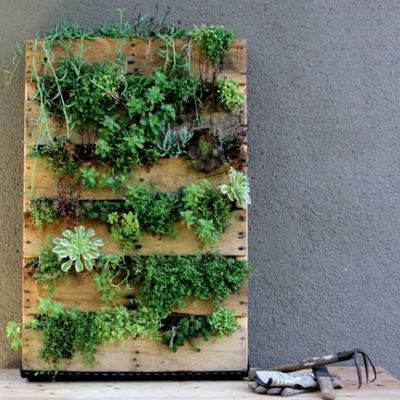 DIY wooden pallet garden
