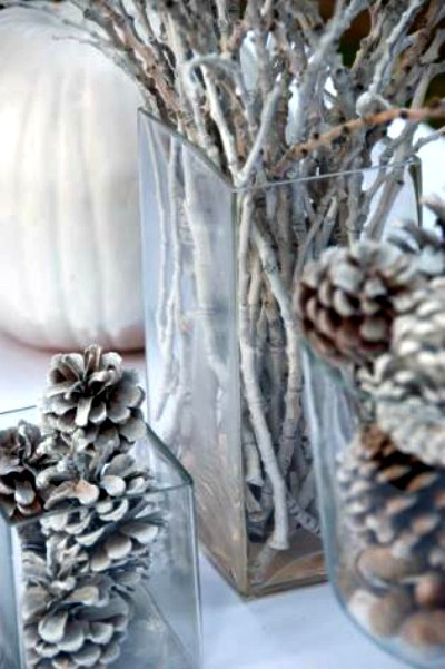 Bleached Pinecones and Branches