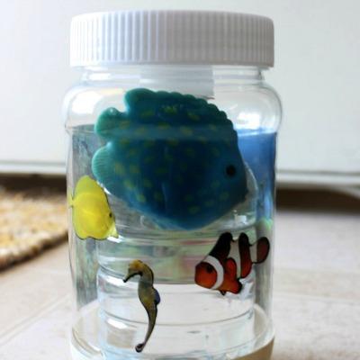 Aquarium Jar Finding Nemo