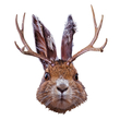 Jackalope Mount Vinyl Wall Decal