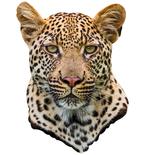 Leopard Mount Vinyl Wall Decal