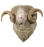 Sheep Mount Vinyl Wall Decal